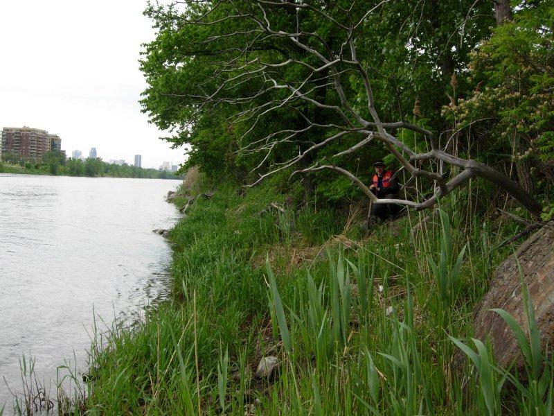 Caractérisation des rives