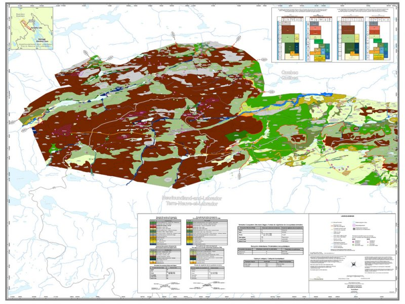 Terrestrial Ecosystem Mapping