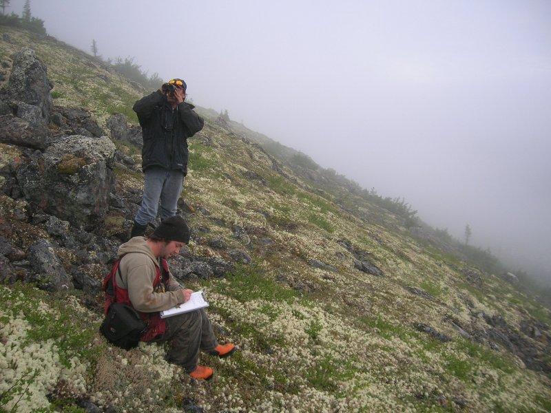 Observation en montagne