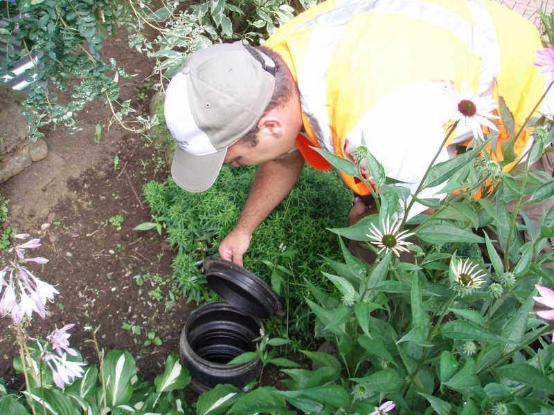 Septic System Characterization