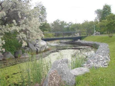 Proposition d'un plan d'aménagement visant la mise en valeur et la restauration écologique des boisés et des bandes riveraines situés dans les parcs urbains