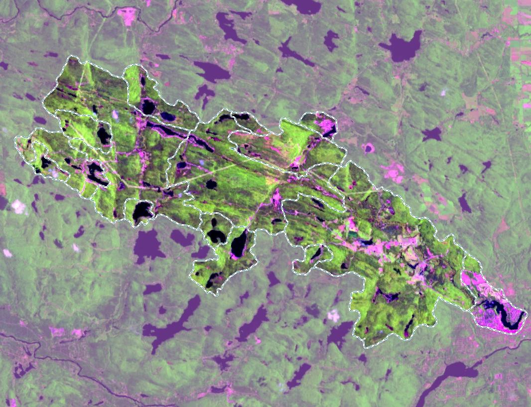 Composé coloré lac Rawdon - Télédétection